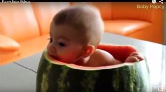 Funny Baby Videos – Funny Baby Videos 2015 For Kids